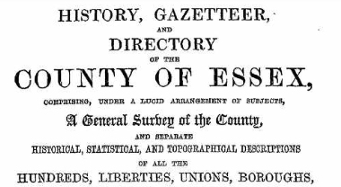 white's directory front page