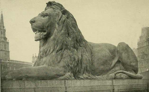 close-up of one of the lions