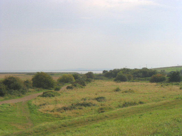 Mucking Marshes