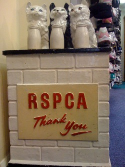 rspca collecting box
